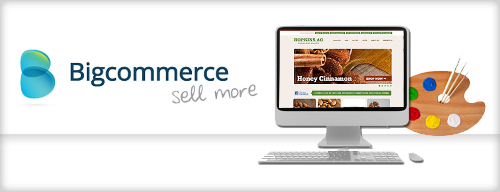 bigcommercewebdesigners