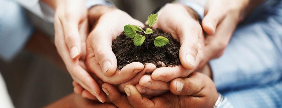 growbusiness